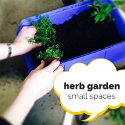 A Herb Garden For Small Spaces