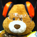 A week with Health and Safety Bear