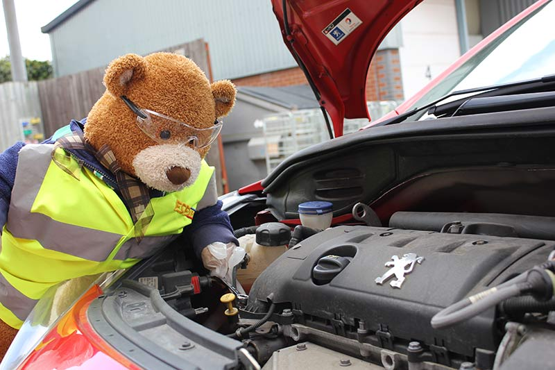 Health and Safety Bear checks the engine