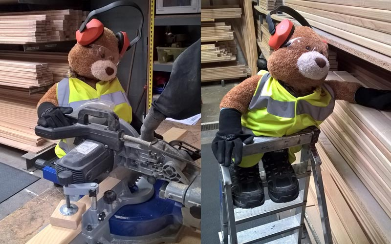 Health and Safety Bear taking on the circular saw