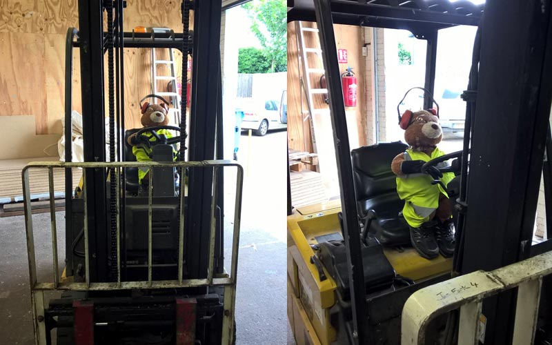 Health and Safety Bear drives the forklift