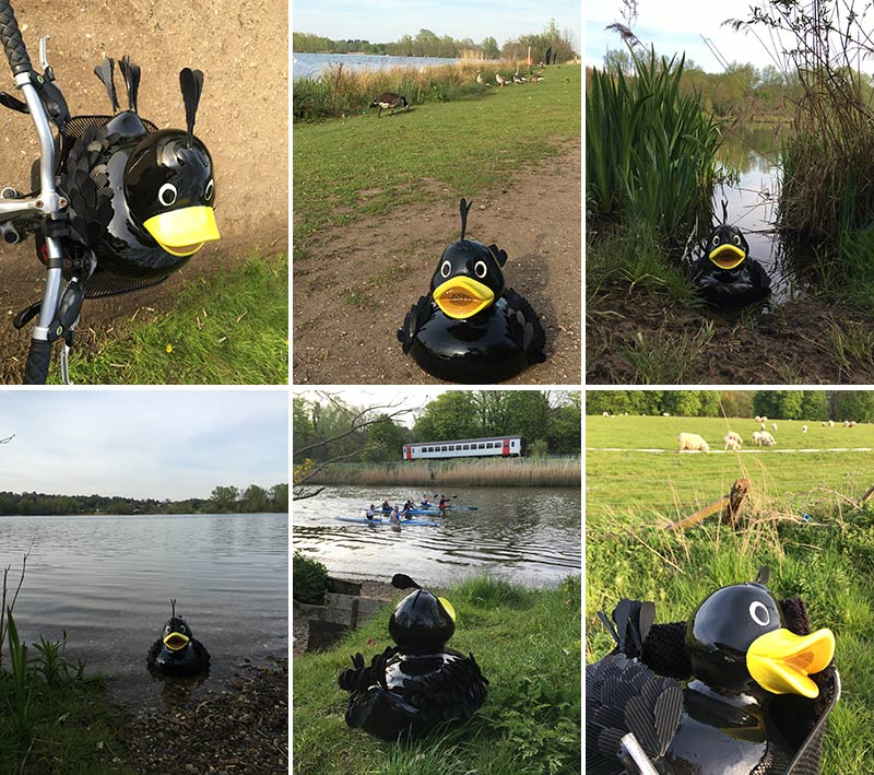 Mat takes a trip to Whitlingham Broad