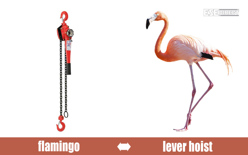 A lever hoist that looks like a flamingo