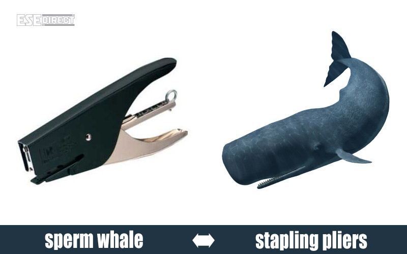 A pair of stapling pliers which look like a sperm whale