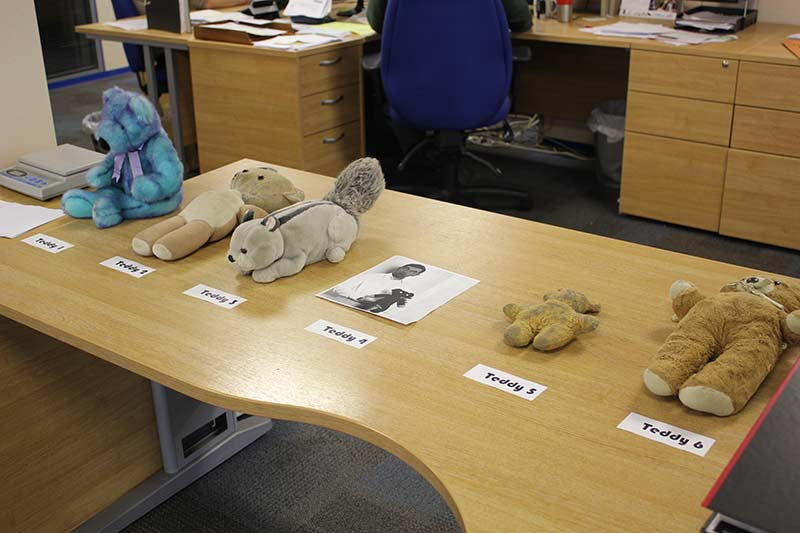 Guess the Teddy Bear Competition at ESE Direct