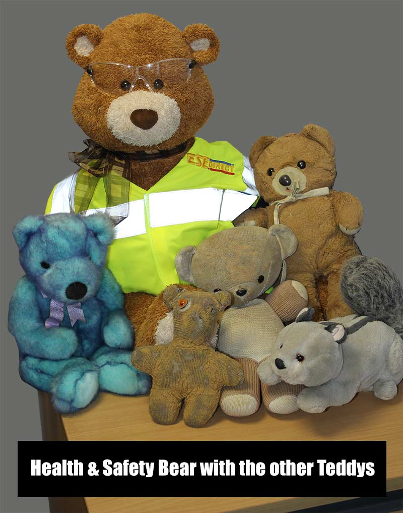 Health and Safety Bear with the other teddys