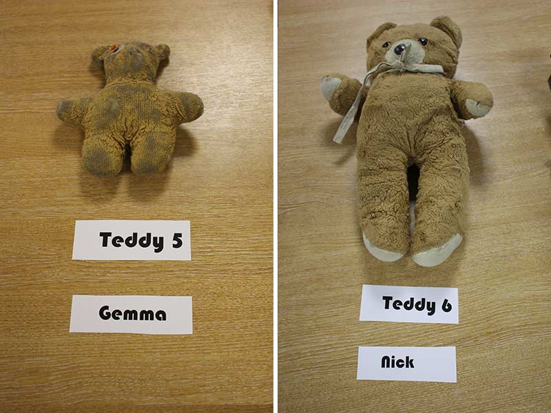 Teddys 5 and 6
