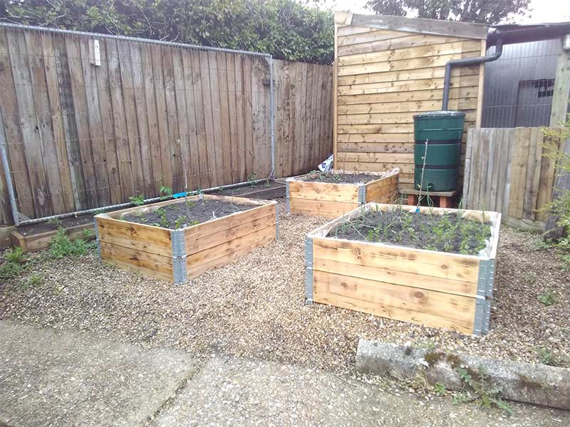 wooden pallet collars used as vegetable planters