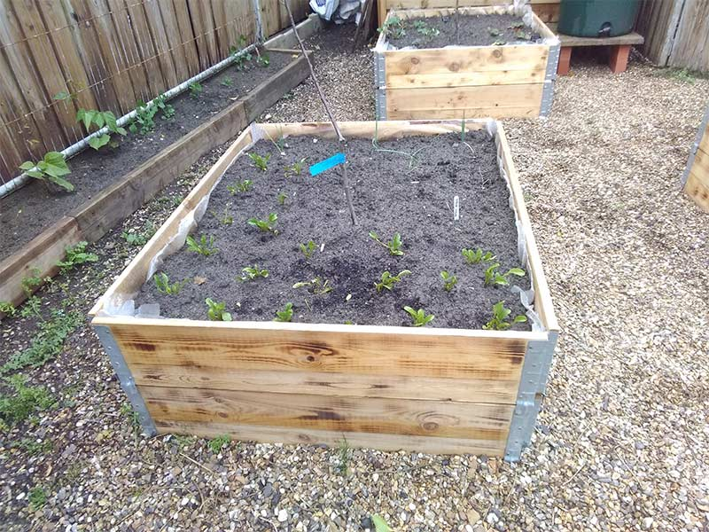 wooden pallet collars used to create raised beds