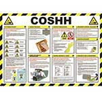 Picture of COSHH Poster / Wall Chart